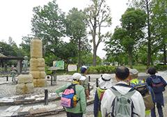 竹の塚ウォーキング&ストレッチ